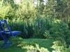 Une chaise peinte en bleue amène une touche de couleur
