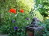 Lanterne et pavots créent un ambiance dans le jardin