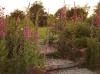 Balade dans le jardin de Carreco