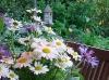 Bouquet de fleurs du jardin de Carreco