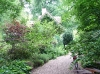 Un très joli jardin près du Mans
