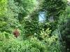 Un jardin qui ne manque pas de jolies scènes