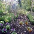 En Isère, à mi-chemin entre Grenoble et Valence, le Jardin des Fontaines Pétrifiantes vous attend pour une nouvelle saison sur le thème du «Jardin en couleurs». Renouvelé à 100% chaque […]