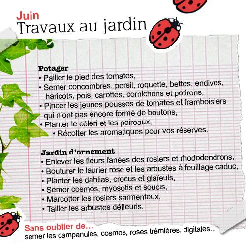 Travaux de juin au jardin for Juin au jardin