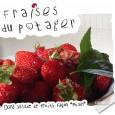 Avec les nombreuses fraises récoltées au potager ce week-end, des idées de desserts aux fraises s'imposent. La salade de fruits façon «Miam» fait partie du carnet de recettes de Carreco […]