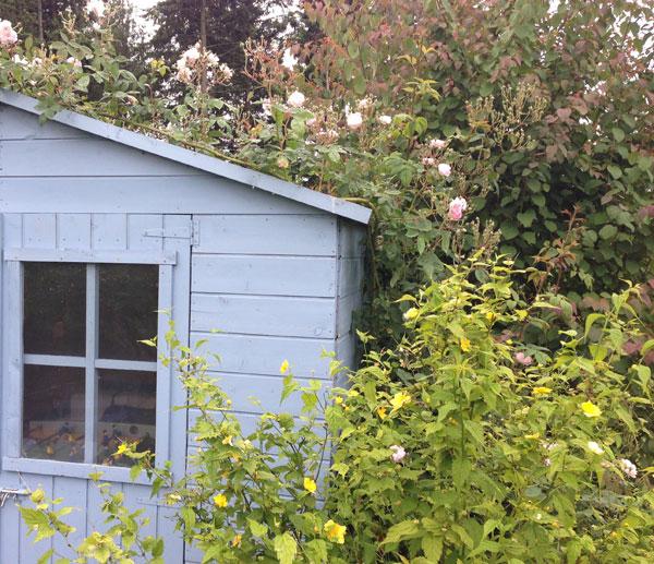 Une cabane de jardin bleue