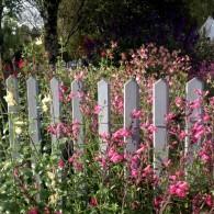 Branches de noisetier, piquets en châtaignier, tressages en osier, ganivelles en châtaignier, planches de bois et rondins de bois renforcent l'esprit nature dans le jardin. Qu'elles soient utilisées en barrière […]