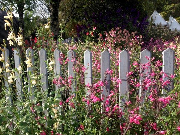 Petite barriere jardin delimiter terrain accueil design for Barriere deco jardin