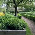 En ce mois de novembre, très apprécié des jardiniers, les travaux de jardinage sont nombreux. C'est dans une ambiance automnale avec ses teintes jaunes, ocreset rouges que le jardin s'offre […]