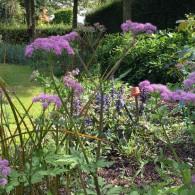 Comme chaque année, l'heure est à la visite de jardins. Cette fois, direction la Normandie… Le jardin d'Elle se situe dans la Manche, à quelques kilomètres de Saint-Lô. Ce jardin, […]