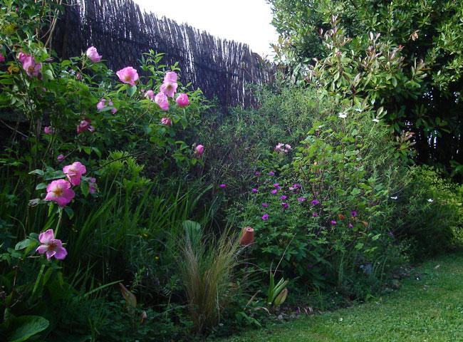 Jardin de Carreco