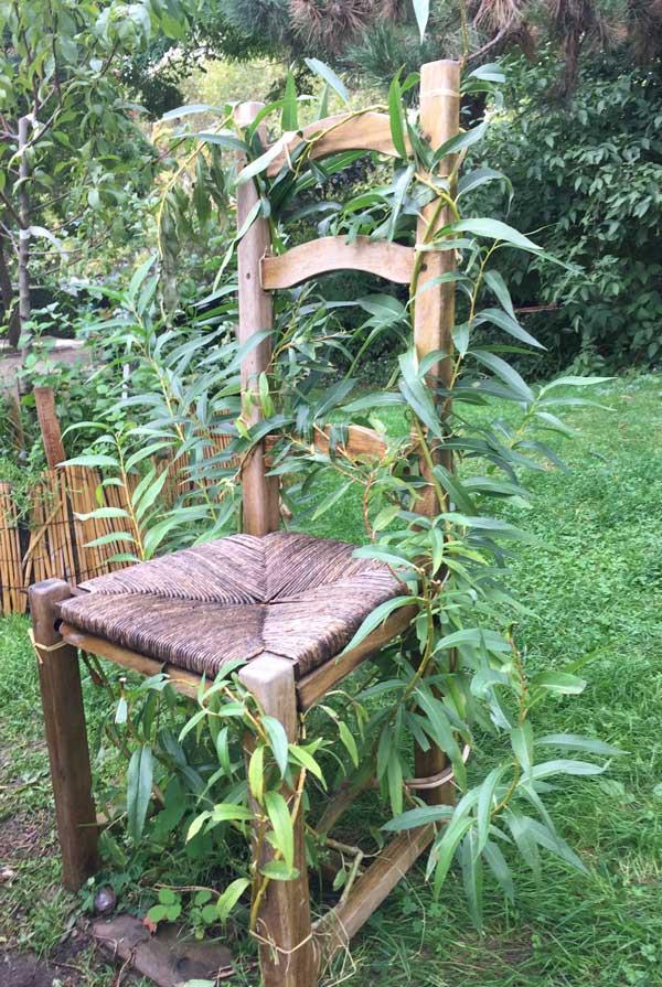 Travaux jardin en octobre au jardin les carnets de carreco for Jardin octobre