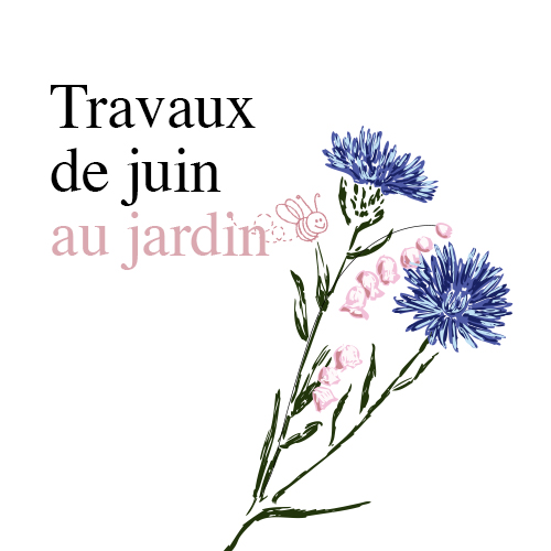 Travaux-jardin-juin