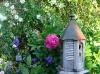 Pivoines et nichoir décorent le jardin