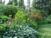 Les vivaces sont nombreuses dans le jardin de Carreco