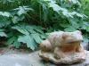 Une grenouille décore le jardin de Carreco