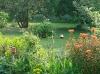 Mélanges de vivaces dans le jardin de Carreco