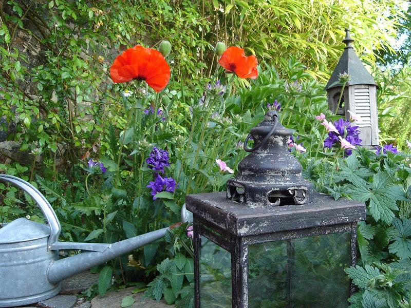 Idée, conseils et déco pour le jardin