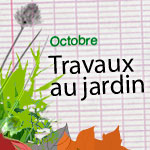 Les travaux d'octobre au jardin