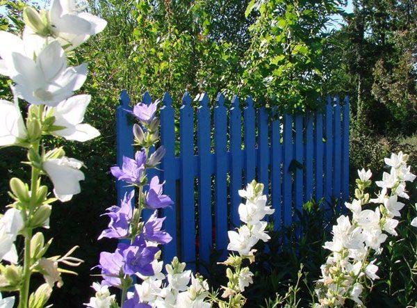 Barrière en bois bleue