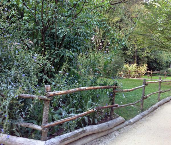 Barrière en rondins de bois