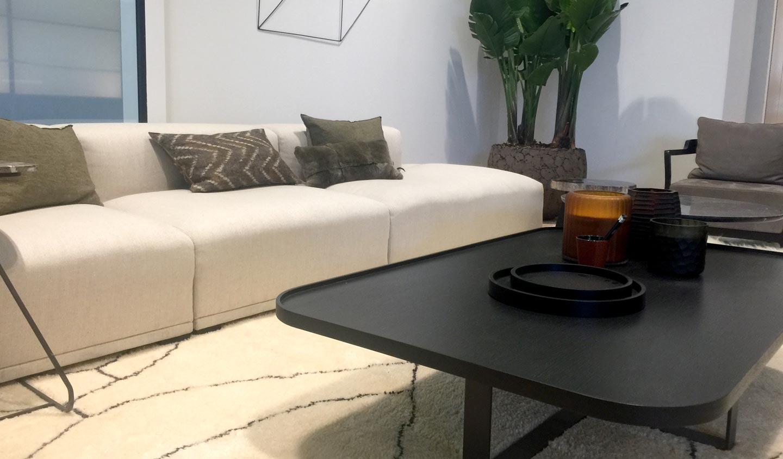Table basse et canapé de XVL Home collection